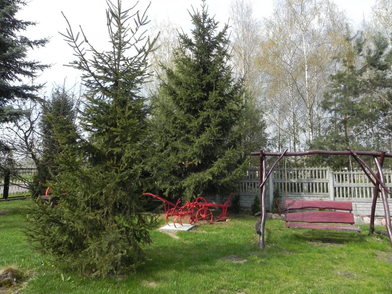 Galeria zdjęć Sochowej Zagrody - podwórko i przyroda (10)