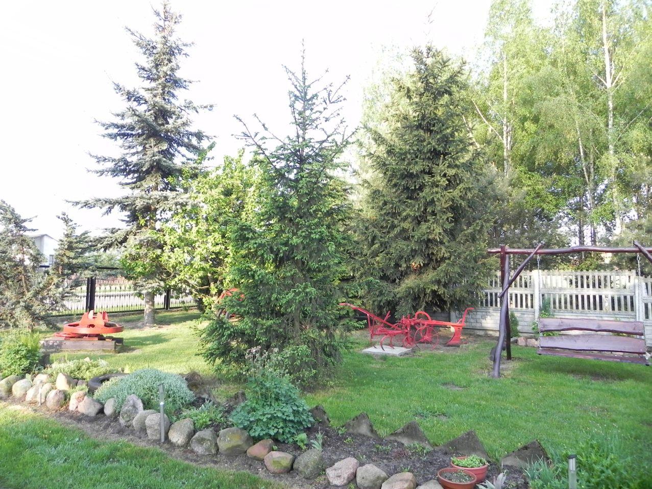 Galeria zdjęć Sochowej Zagrody - podwórko i przyroda (25)
