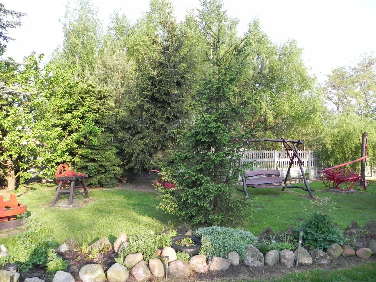 Galeria zdjęć Sochowej Zagrody - podwórko i przyroda (29)