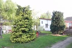 Galeria zdjęć Sochowej Zagrody - podwórko i przyroda (26)