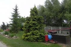 Galeria zdjęć Sochowej Zagrody - podwórko i przyroda (52)