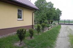 Galeria zdjęć Sochowej Zagrody - podwórko i przyroda (53)