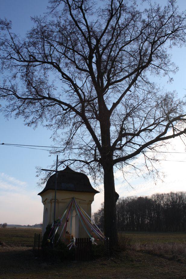 2019-02-28 Wielka Wola kapliczka nr1 (2)
