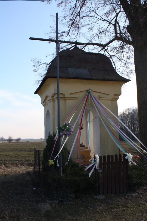 2019-02-28 Wielka Wola kapliczka nr1 (5)
