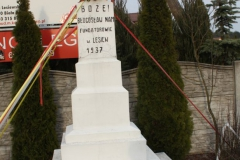 2019-03-07 Wólka Lesiewska kapliczka nr1 (9)
