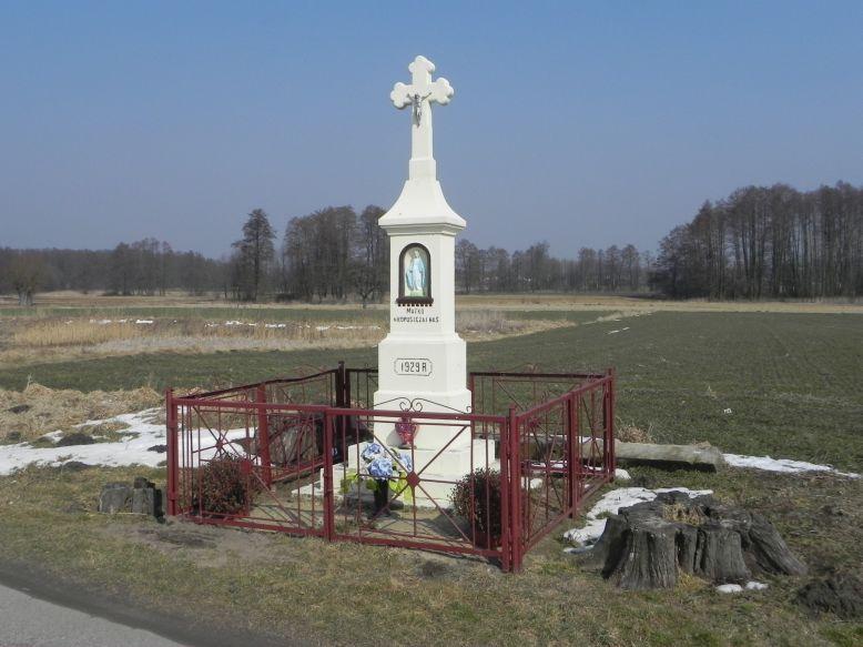 2018-03-25 Wylezinek kapliczka nr2 (4)