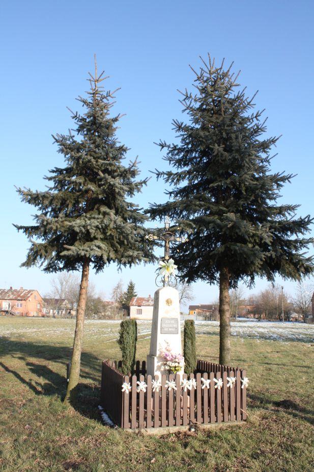 2019-02-08 Wysokienice kapliczka nr2 (14)