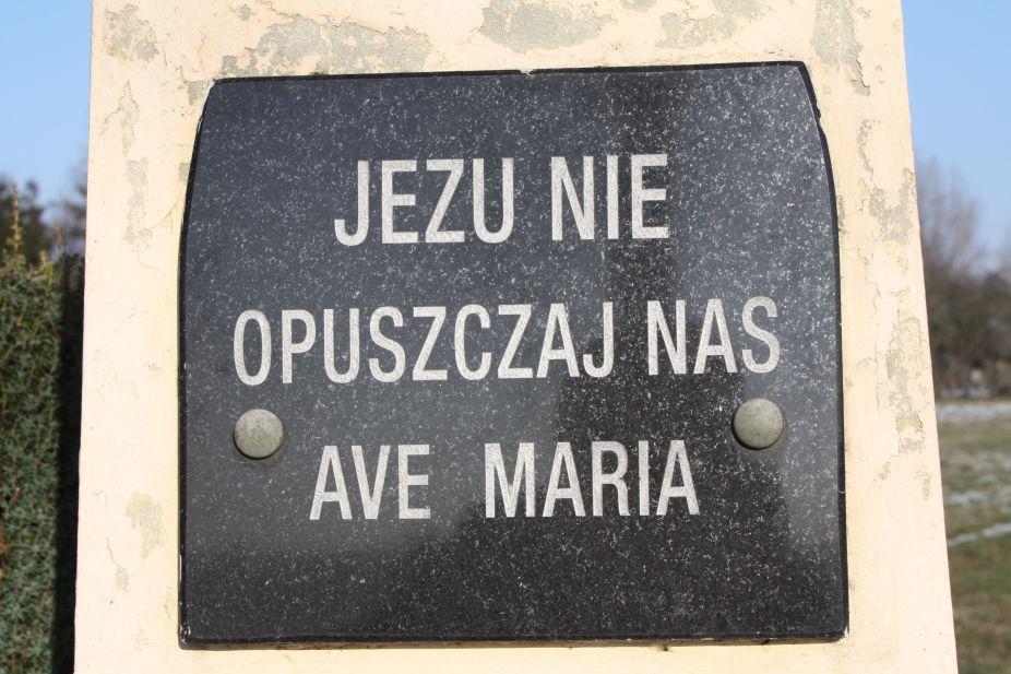 2019-02-08 Wysokienice kapliczka nr2 (8)