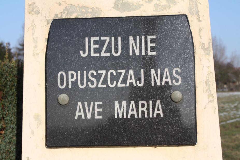 2019-02-08 Wysokienice kapliczka nr2 (9)