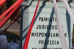 2019-02-08 Wysokienice kapliczka nr4 (8)