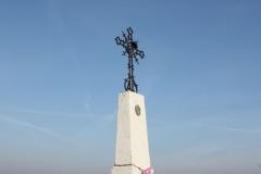 2019-02-18 Wysokienice kapliczka nr7 (16)