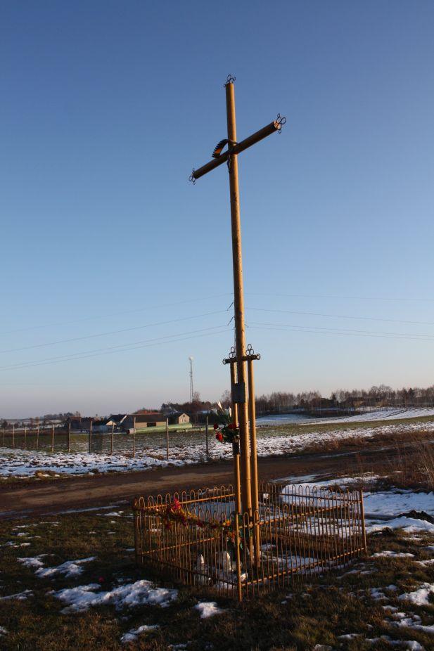 2019-02-08 Złota krzyż nr4 (9)