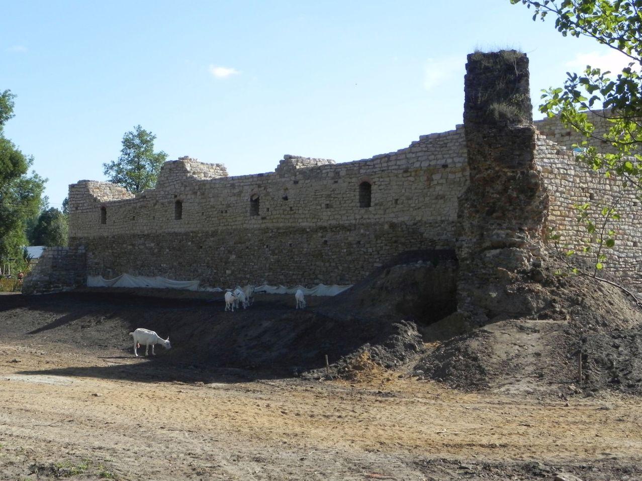 2012-07-22 Inowłódz - Ruiny zamku (59)
