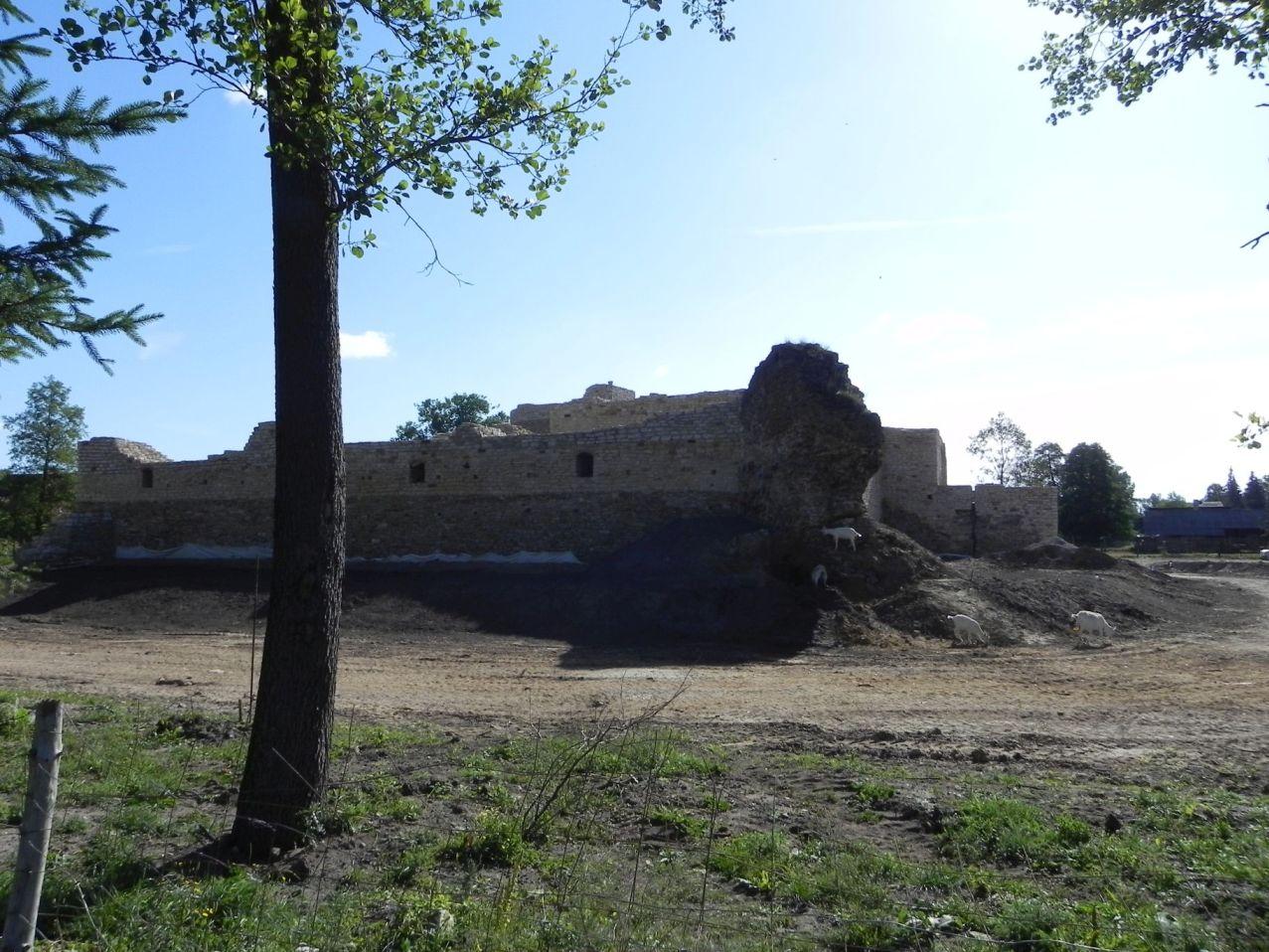 2012-07-22 Inowłódz - Ruiny zamku (63)