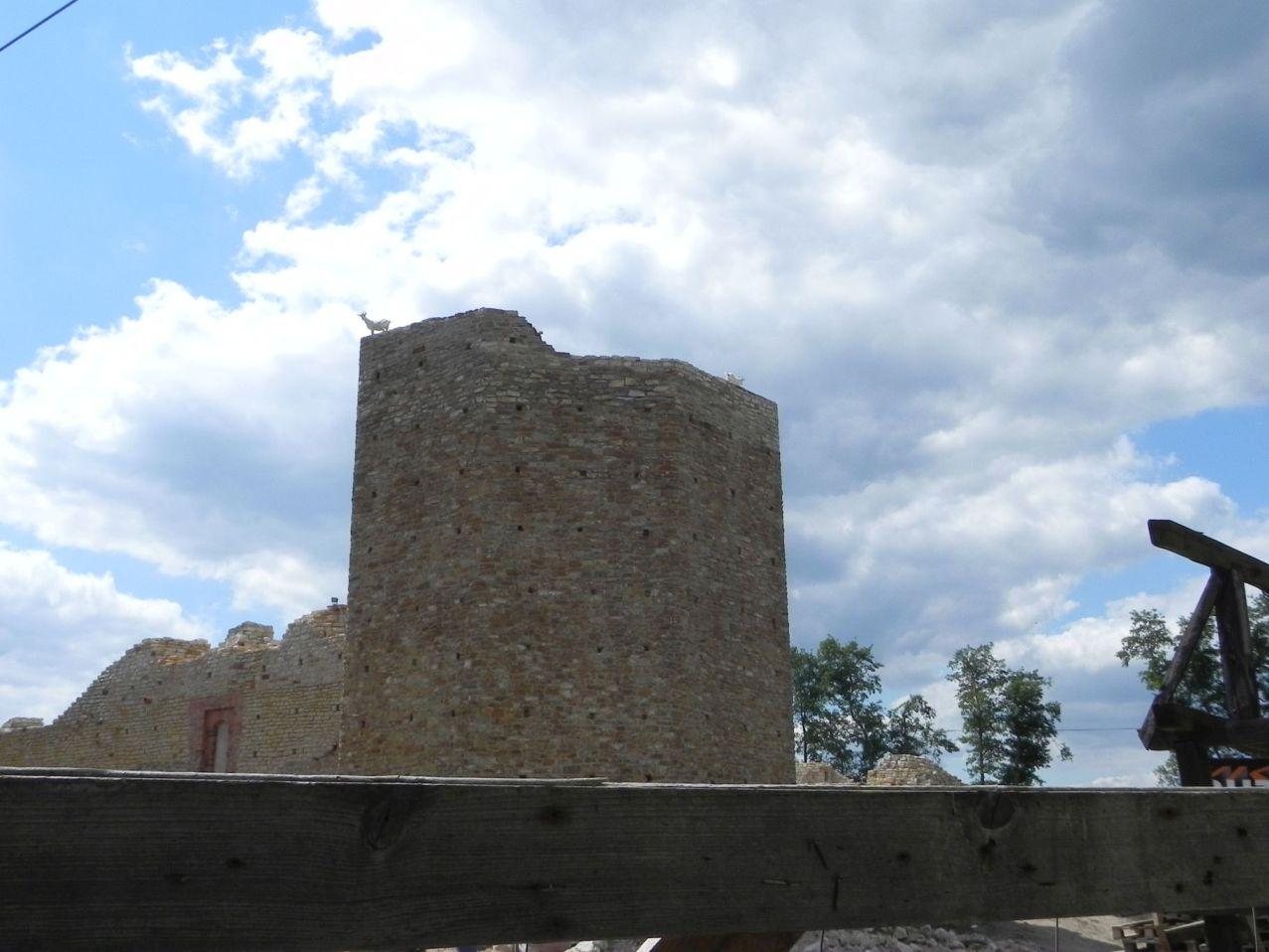 2012-07-22 Inowłódz - Ruiny zamku (73)