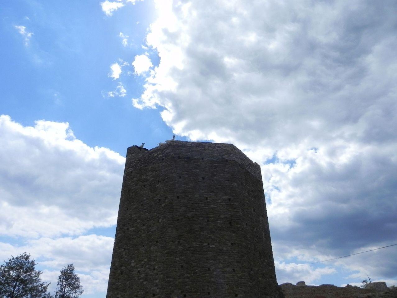 2012-07-22 Inowłódz - Ruiny zamku (77)