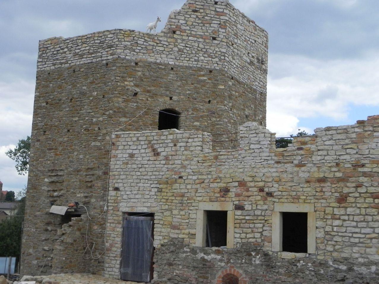 2012-07-22 Inowłódz - Ruiny zamku (99)