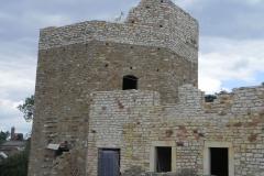 2012-07-22 Inowłódz - Ruiny zamku (100)