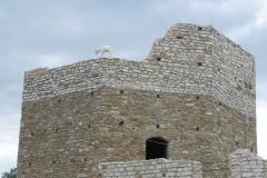 2012-07-22 Inowłódz - Ruiny zamku (102)