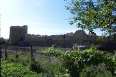 2012-07-22 Inowłódz - Ruiny zamku (14)