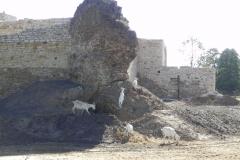 2012-07-22 Inowłódz - Ruiny zamku (60)