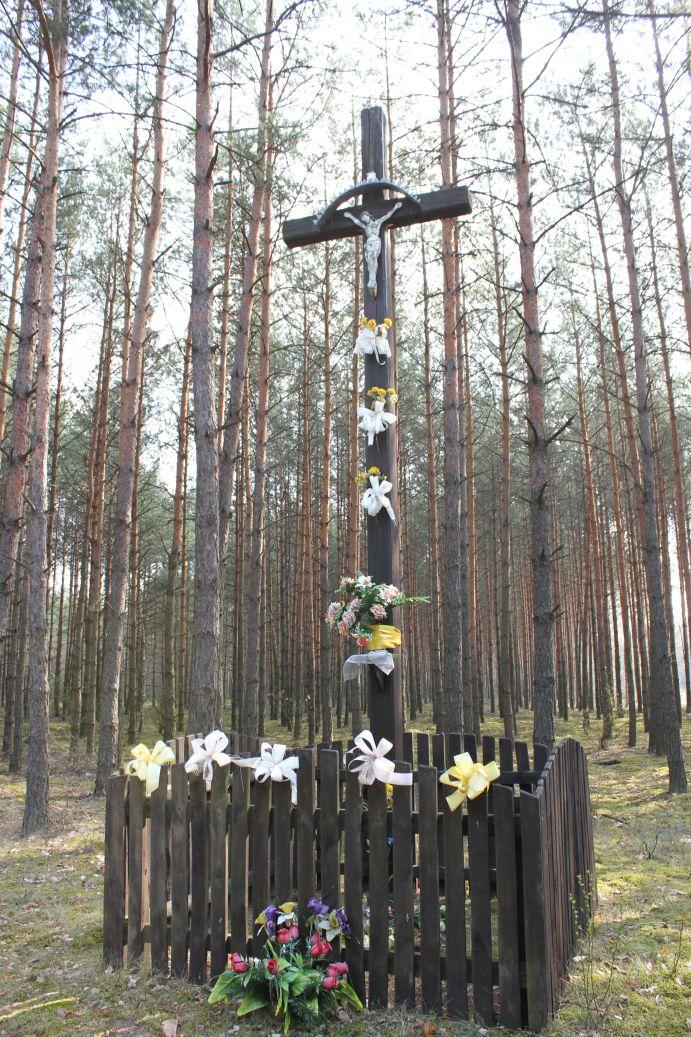 2019-04-07 Wólka Ligęzowska krzyż nr1 (13)