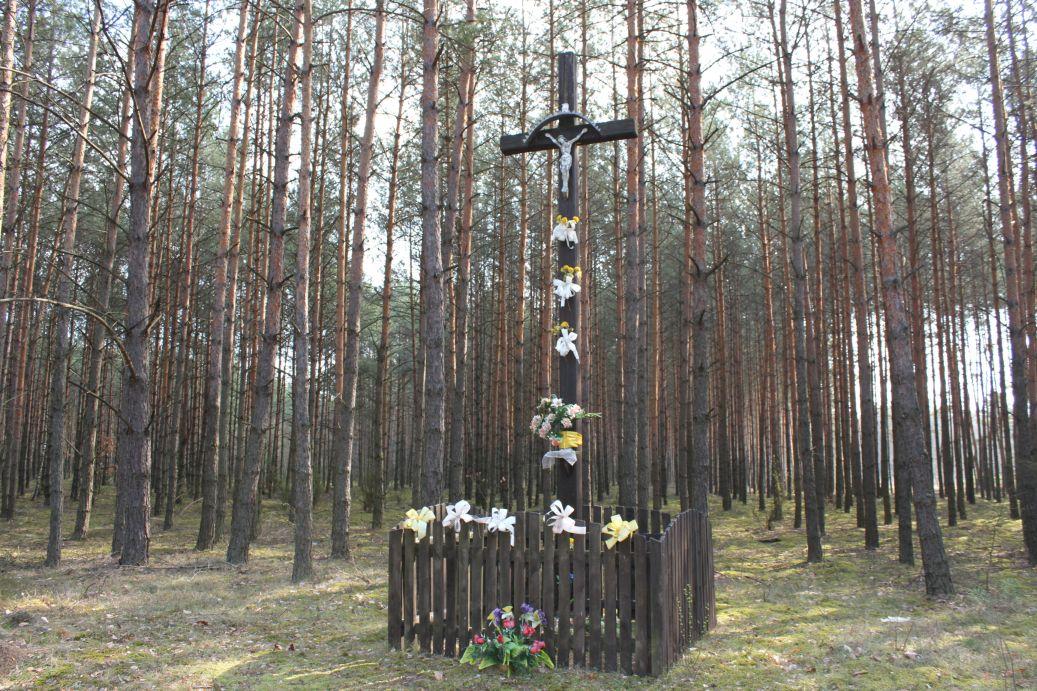 2019-04-07 Wólka Ligęzowska krzyż nr1 (14)