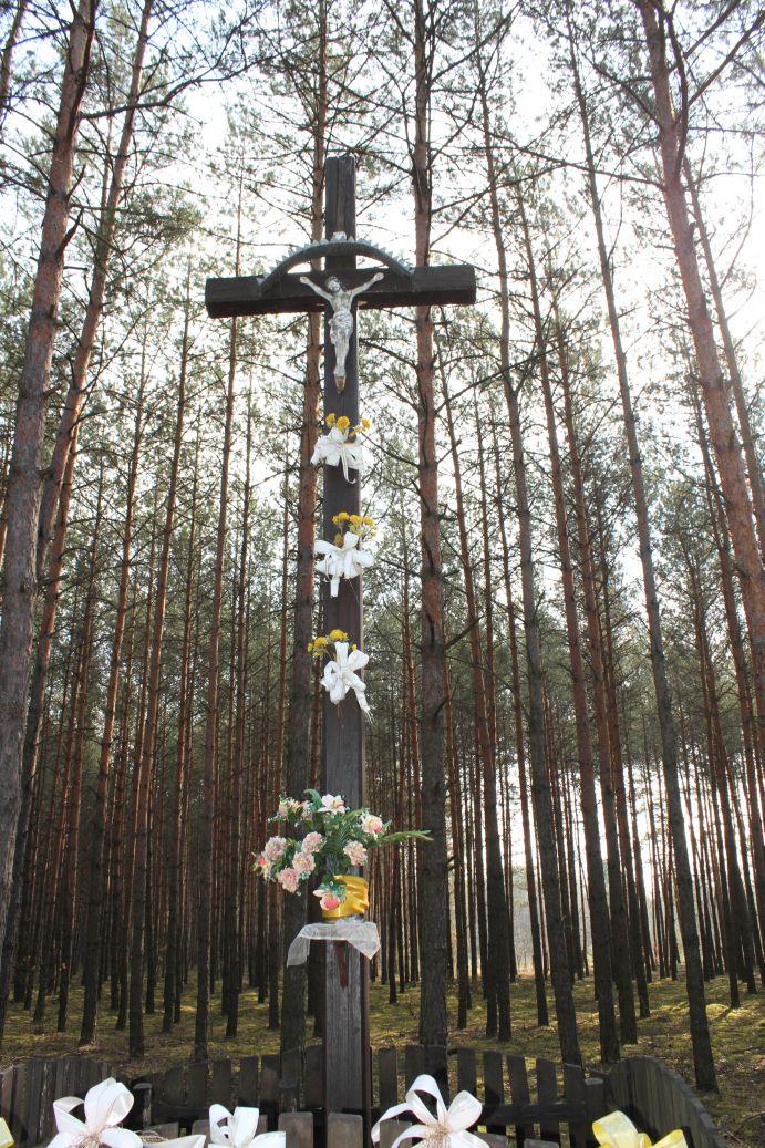2019-04-07 Wólka Ligęzowska krzyż nr1 (8)