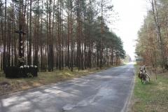 2019-04-07 Wólka Ligęzowska krzyż nr1 (1)