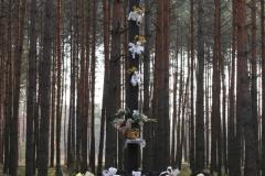 2019-04-07 Wólka Ligęzowska krzyż nr1 (4)