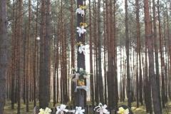 2019-04-07 Wólka Ligęzowska krzyż nr1 (7)