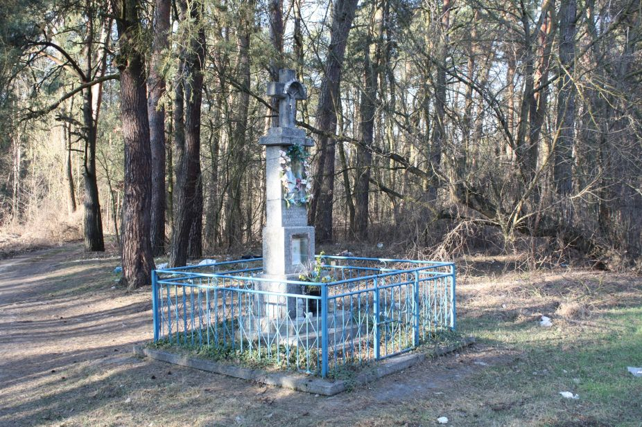 2019-03-02 Wólka Magierowa kapliczka nr1 (1)