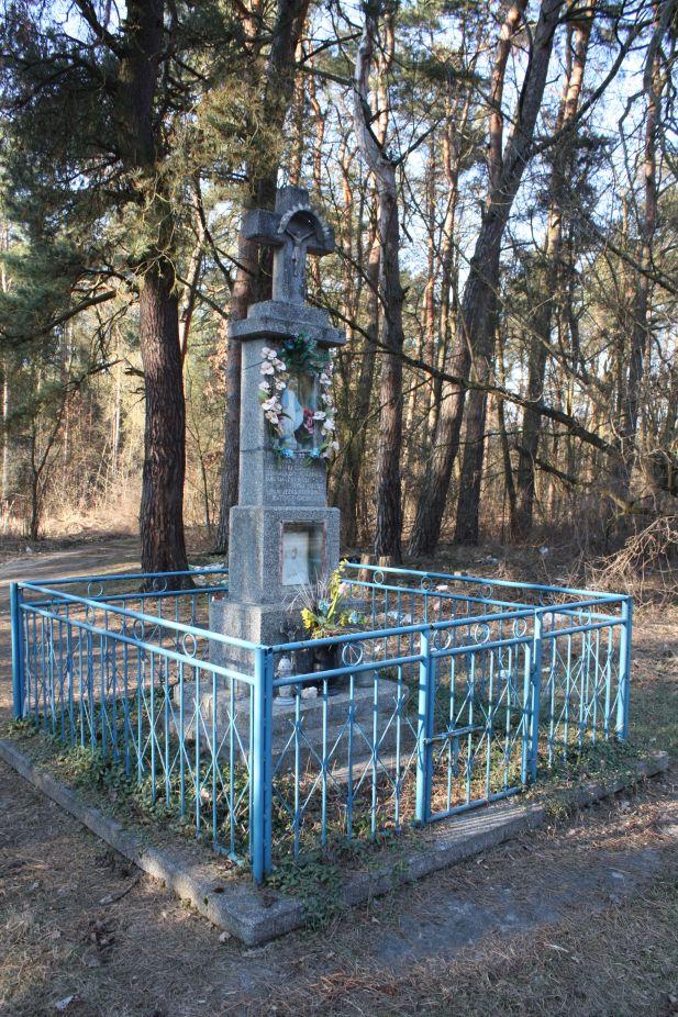 2019-03-02 Wólka Magierowa kapliczka nr1 (12)