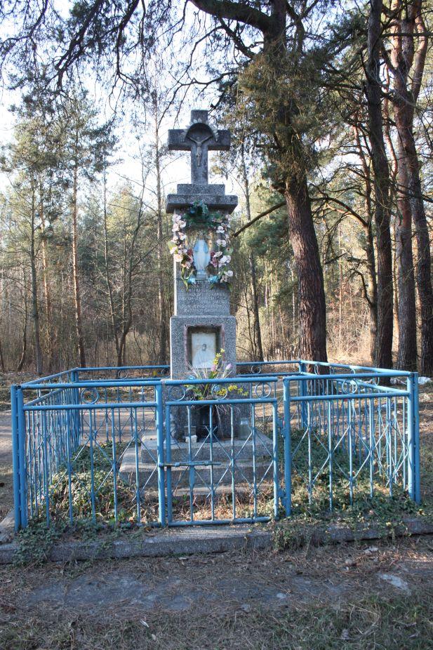 2019-03-02 Wólka Magierowa kapliczka nr1 (3)