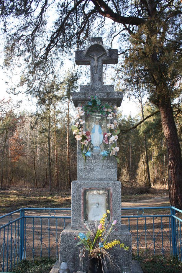 2019-03-02 Wólka Magierowa kapliczka nr1 (9)
