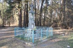 2019-03-02 Wólka Magierowa kapliczka nr1 (13)