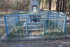 2019-03-02 Wólka Magierowa kapliczka nr1 (4)