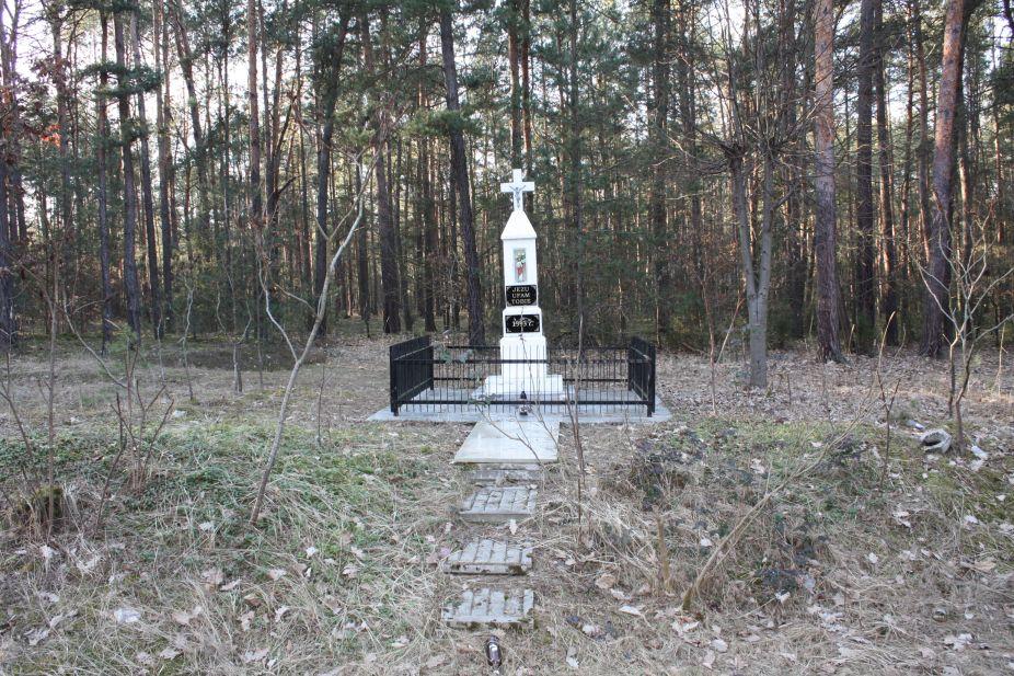2019-03-02 Wysokin kapliczka nr1 (1)
