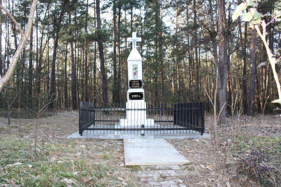 2019-03-02 Wysokin kapliczka nr1 (3)