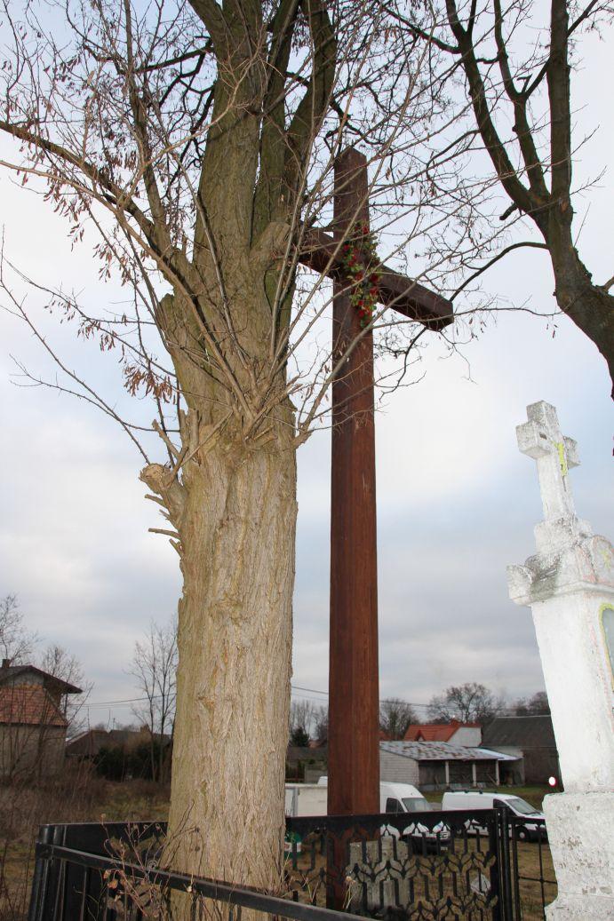 2019-12-29 Wysokin kapliczka nr3 (19)