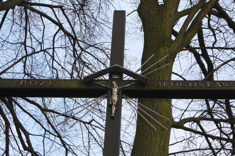2019-02-15 Bujały krzyż nr1 (10)