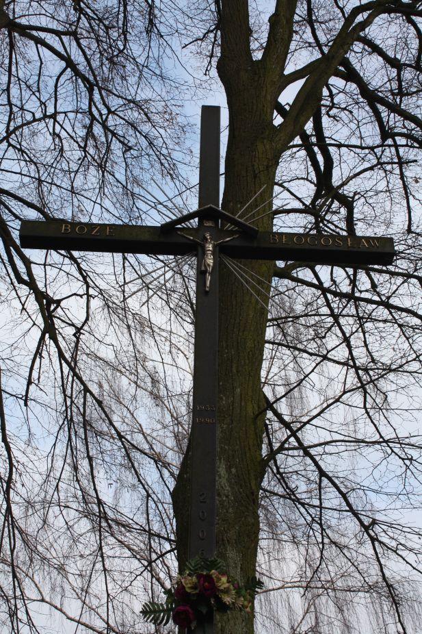 2019-02-15 Bujały krzyż nr1 (13)