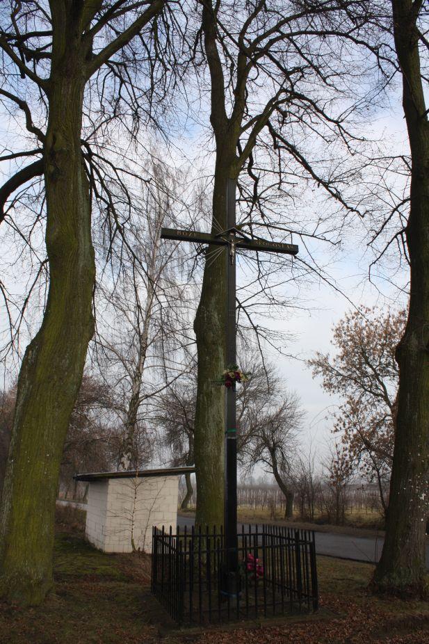 2019-02-15 Bujały krzyż nr1 (14)