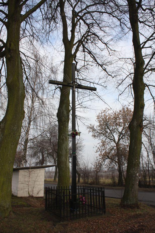 2019-02-15 Bujały krzyż nr1 (15)
