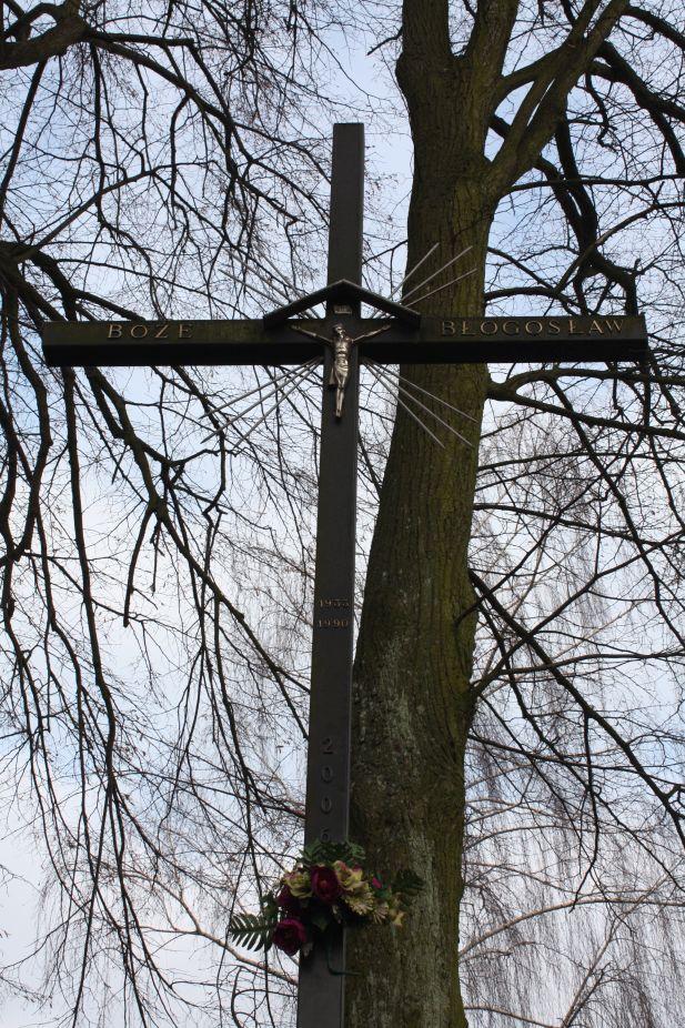 2019-02-15 Bujały krzyż nr1 (6)