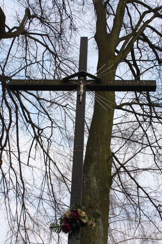 2019-02-15 Bujały krzyż nr1 (8)
