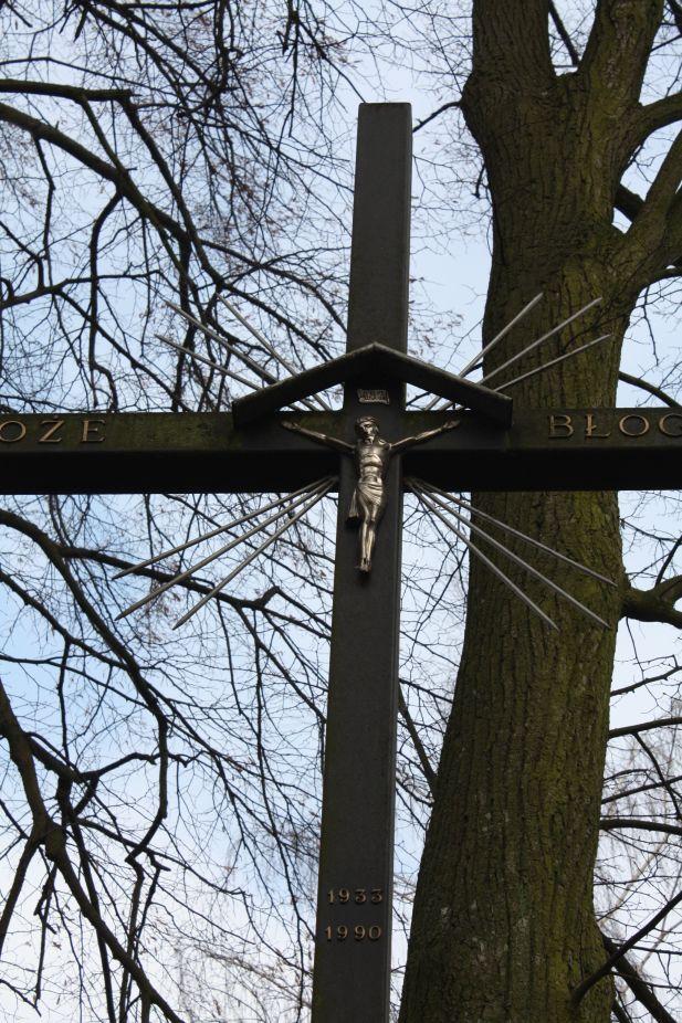 2019-02-15 Bujały krzyż nr1 (9)