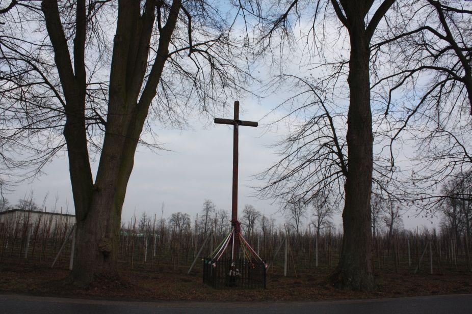 2019-02-15 Bujały krzyż nr2 (3)