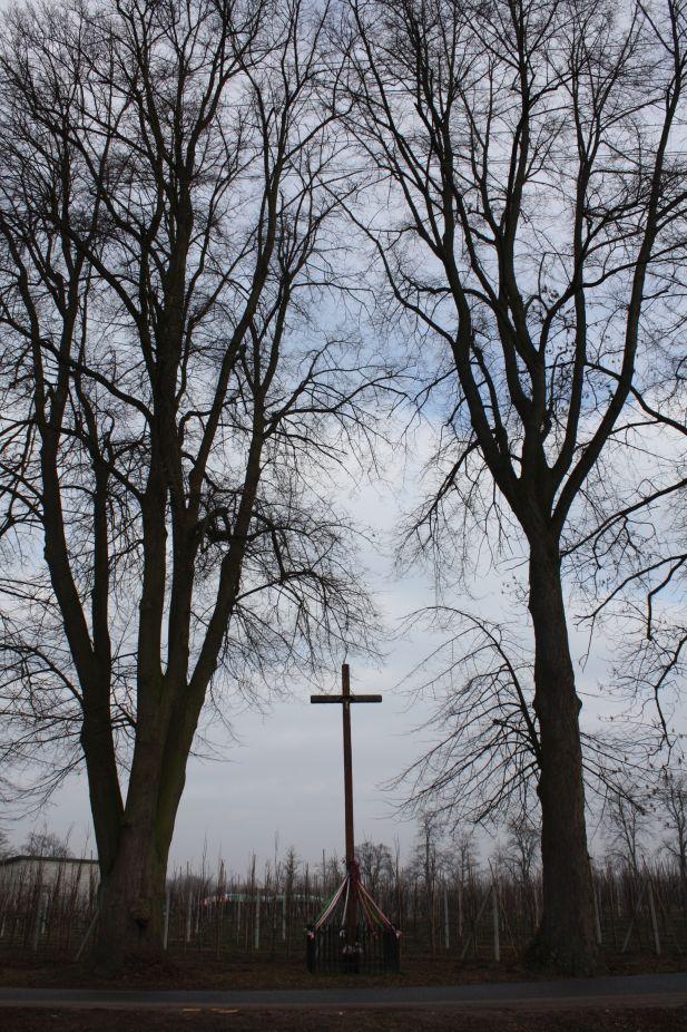2019-02-15 Bujały krzyż nr2 (4)