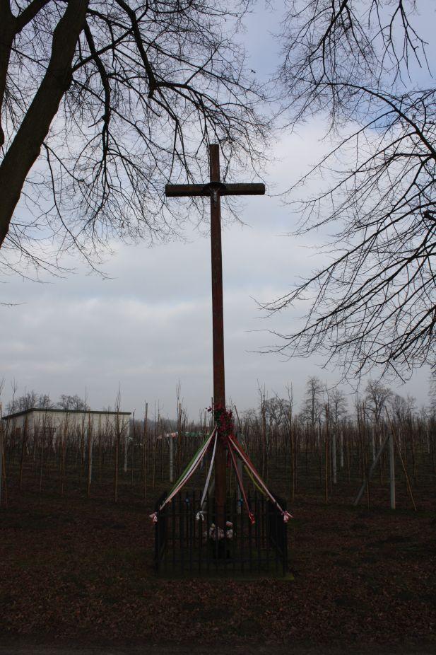 2019-02-15 Bujały krzyż nr2 (5)